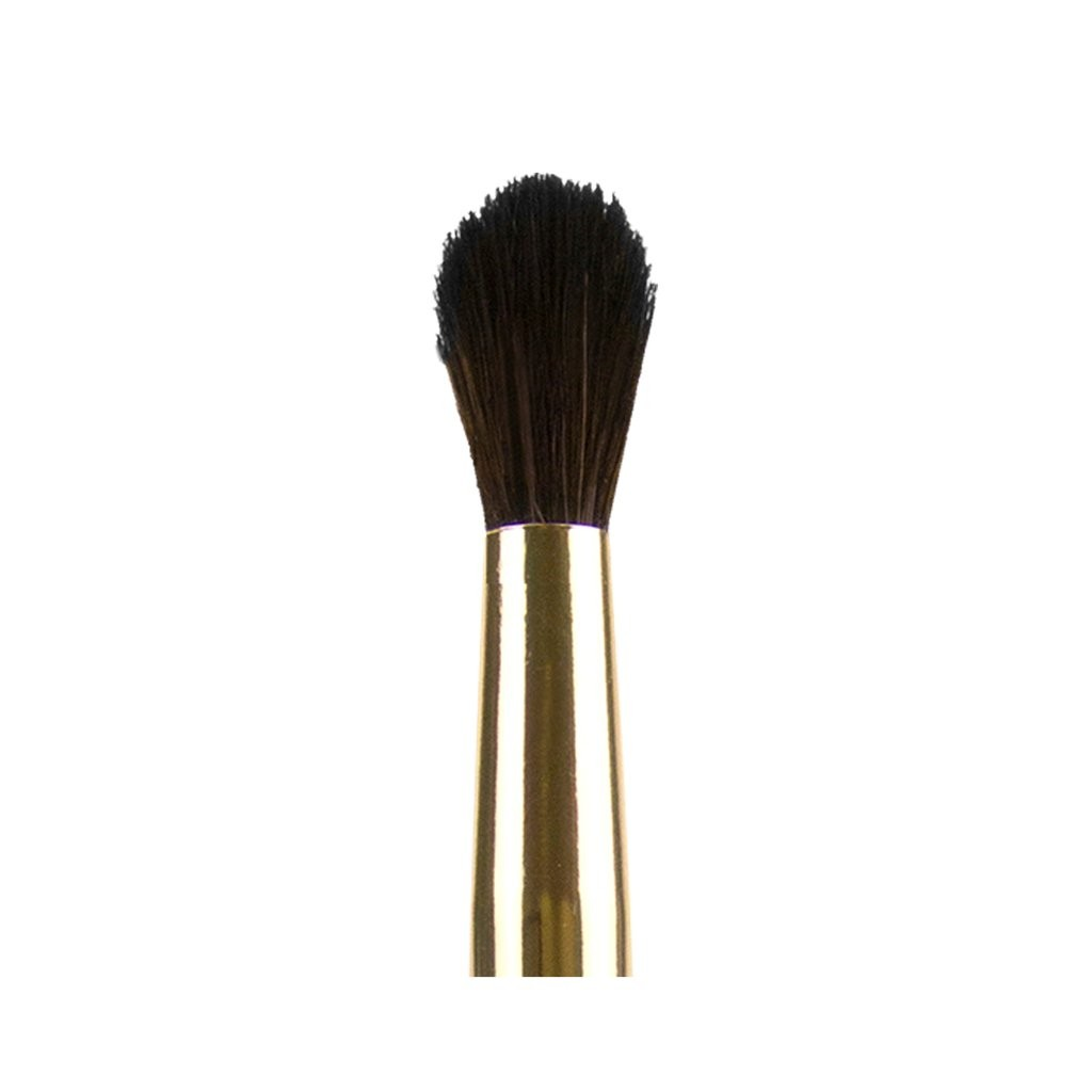 Gewölbter Mischpinsel - Pro Brushes - Tapered Blending Brush